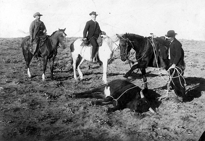 cowboys and cattlemen essay The day the cowboys quit by elmer kelton essay keep the cowboys from owning any cattle this causes the cowboys to rise up together in something of a.