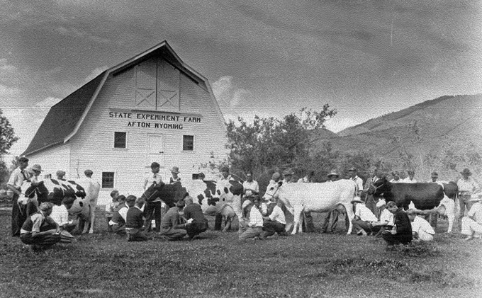 "Future farmers in ""Little Switzerland""--Star Valley--study dairy types at the state experiment farm substation, Afton, 1932."