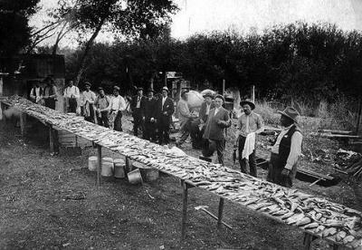 Third Annual Fish Fry, Saratoga 1910. (c) Historical Reproductions by Perue.