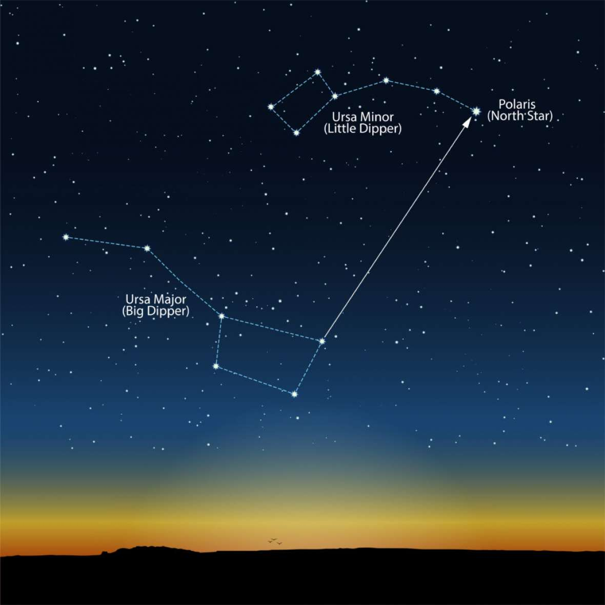 The North Star and the dippers in the night sky. Science Sparks