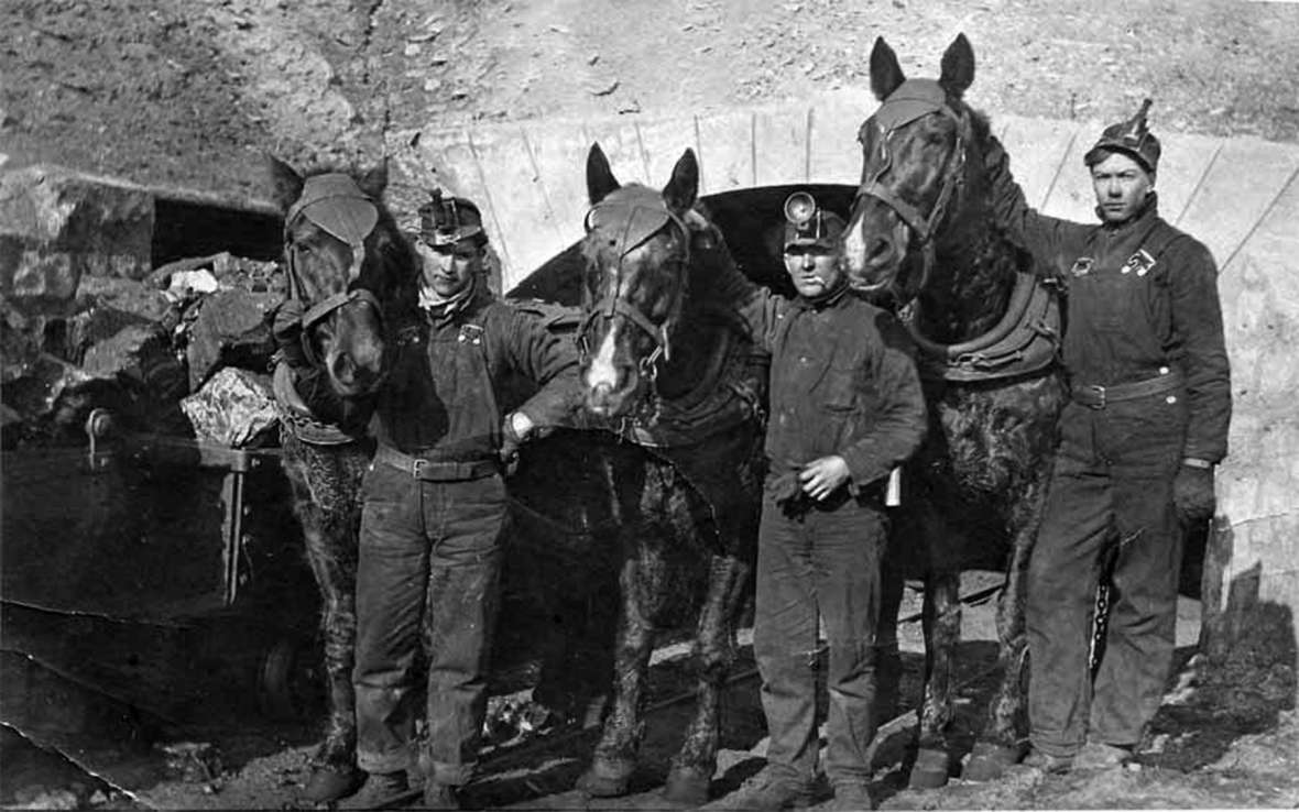 Joe Overy, James Duncan and Peter Robertson at the Reliance mine entrance, 1913. Horses were still used at the time to pull the coal carts from the mine. Later they would be replaced by a trolley-like system of coal cars. Sweetwater County Historical Museum photo.
