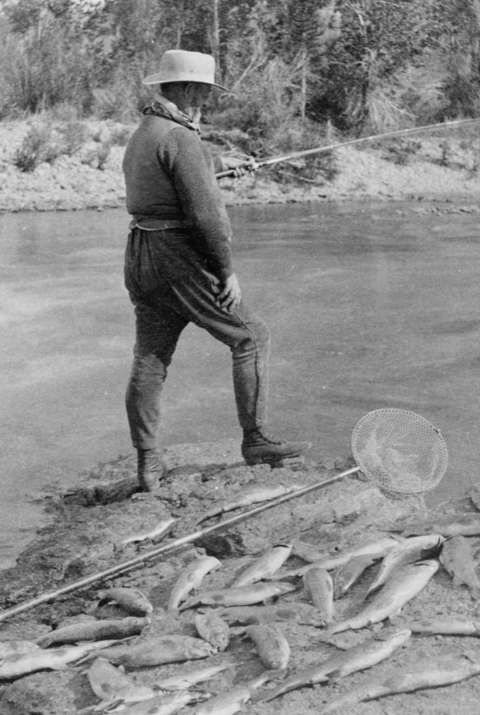 Above, Brig. Gen. Anson Stager fishes in the Gros Ventre River. Below, President Arthur's catch for the day. The Associated Press reporter traveling with the group claimed the president caught three trout totaling four and a quarter pounds on a single cast—and on six other casts caught two trout each. F. Jay Haynes photo, Library of Congress.