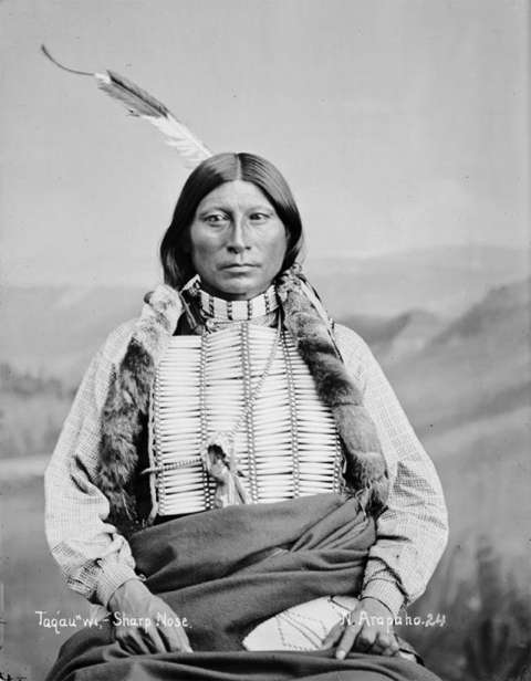 Arapaho leader Sharp Nose, shown here in 1882, was Sherman Coolidge's uncle. When Coolidge returned to the reservation as a young divinity student in 1884, he was shocked by the emotion with which his mother, Ba-ahnoce, his uncle and other relatives greeted him. Firstpeople.us.