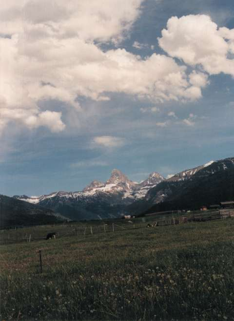 The Tetons from the west near the Idaho-Wyoming border. Richards would have passed near here. Author photo.